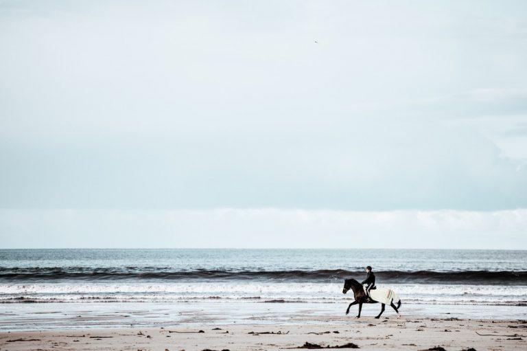 obóz konny nad morzem